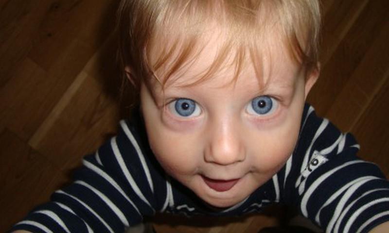 В какой детский сад вы собираетесь отдать своего ребенка?