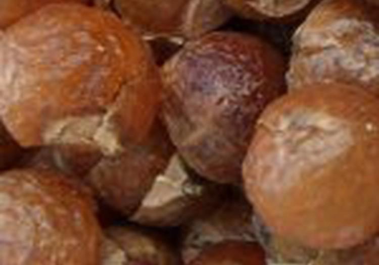 Мыльные орешки - что за чудо такое?