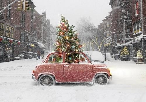 МУЗ-АДВЕНТ: Домой на Рождество