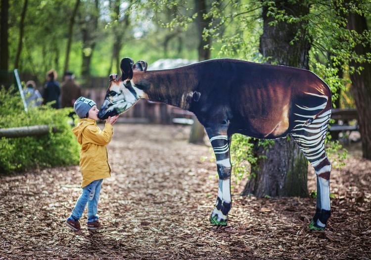 Вроцлавский зоопарк: любят ли здесь животных?