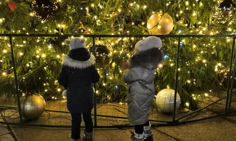 Зимние бродилки: Елгава -  новогодняя елочка и исторические экспозиции в башне Елгавской церкви Святой Троицы