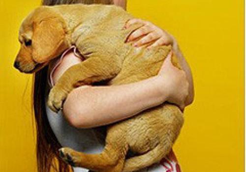 Малыш и собака в одном доме