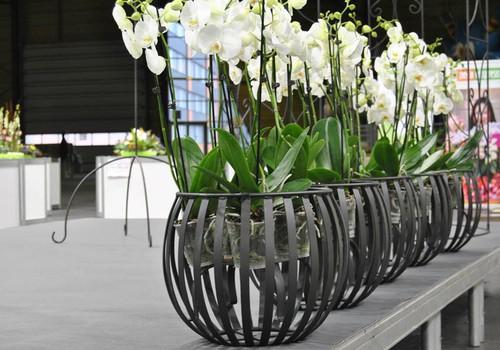 """FACEBOOK: Хочешь украсить свой дом новыми элементами интерьера от OOO """"Raunas Lauktehnika""""?"""