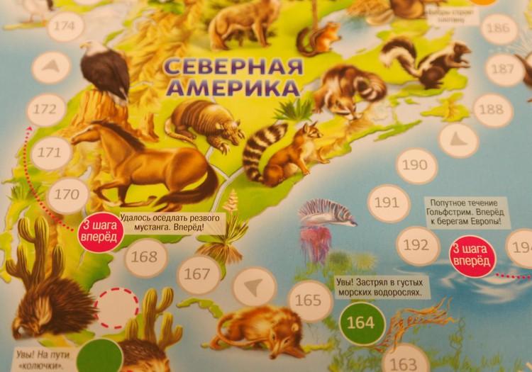 Игра-ходилка: Животный мир земли