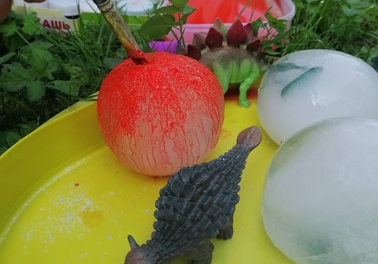 Ледяные яйца динозавров