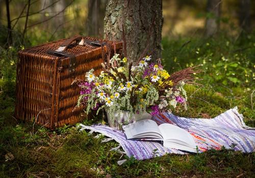 Отмечаем Лиго: 6 вещей, которые понадобятся вам на пикнике
