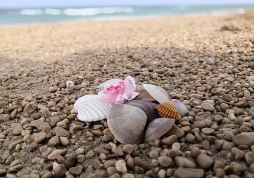 Солнечно-дождливая Испания. Приключения на море