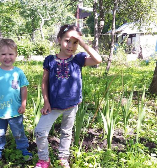 Как мы провели лето 2019: городские жители дорвались до огородика