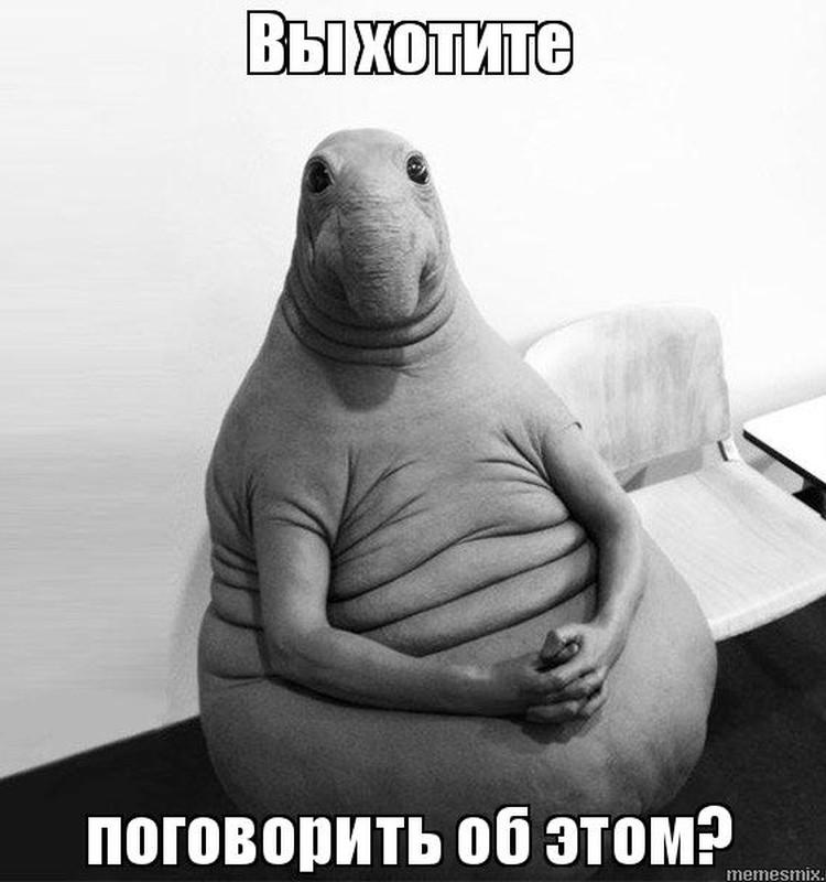 МАРАФОН СТРОЙНОСТИ МК. Ирена: Осознанность