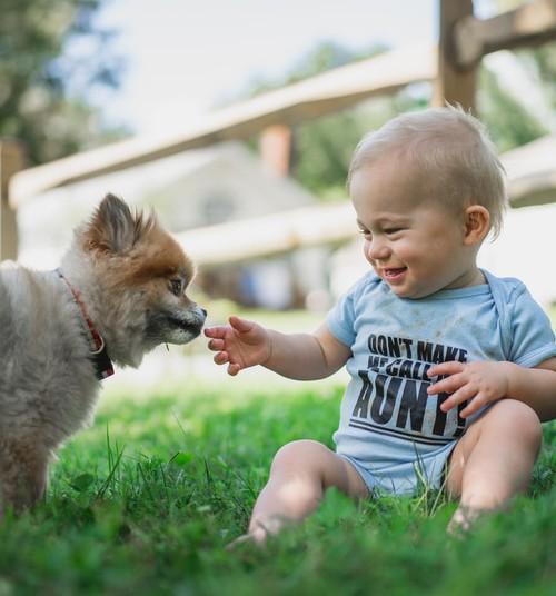 Агнесе Раковска и Эдгар Балиньш соревнуются: какая у нас страна – любителей собак или любителей кошек?