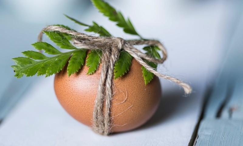 Лайфхаки для покраски пасхальных яичек