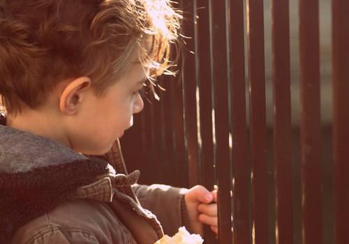 Детямиз малообеспеченных и многодетных семей предоставят продуктовые карты