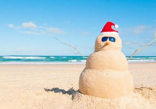ОНЛАЙН-КОНФЕРЕНЦИЯ: Идеальный зимний отдых – это горнолыжные курорты или жаркие страны?