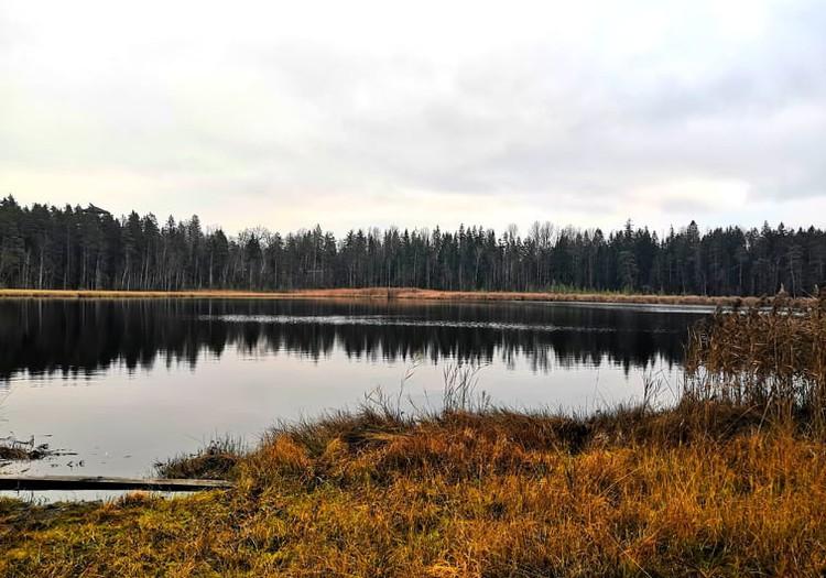Осенние прогулки: природная тропа болота Кангари