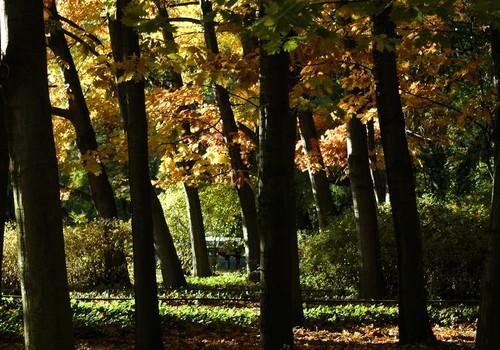 С 21 октября закрыты Лигатненские природные тропы и несколько природных центров