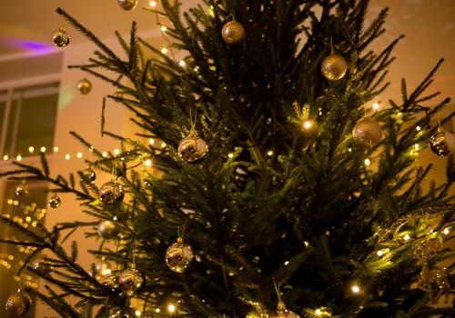 """Отзыв о новогодней ёлочке МК написали, билеты на """"Зимняя сказка"""" получили!"""