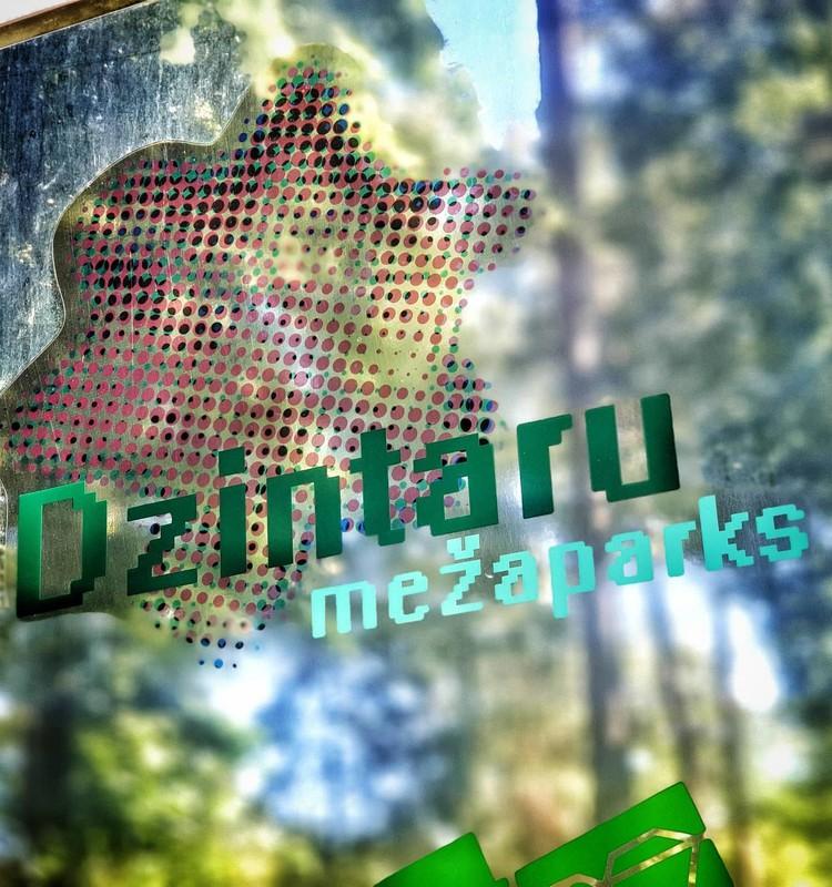 Юрмальские прогулки: Межапарк в Дзинтари