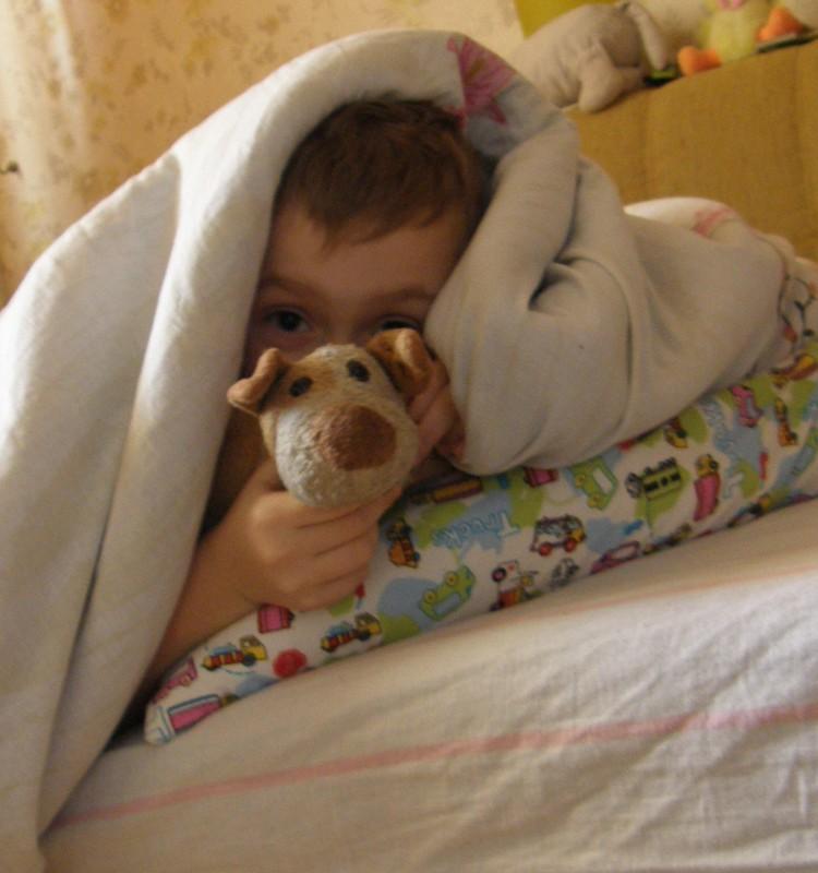 Собака друг Илюши или наша хранительница сна