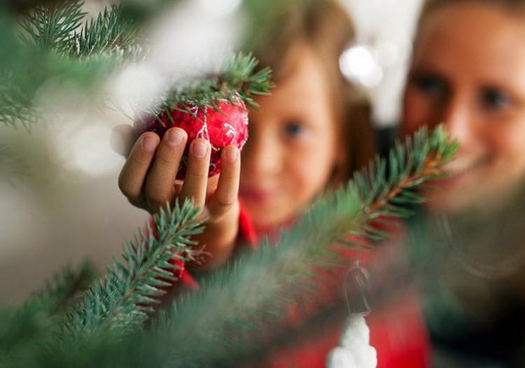 Как защитить елку от  ребенка? Или как познакомить малыша с традициями праздника?