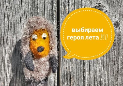 100 ДНЕЙ ЛЕТА: Выбираем народного Героя лета 2017!