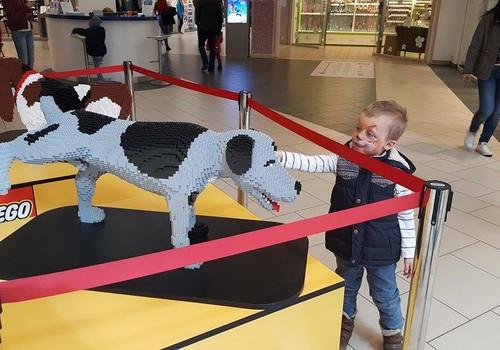 LEGO-фестиваль в Spice