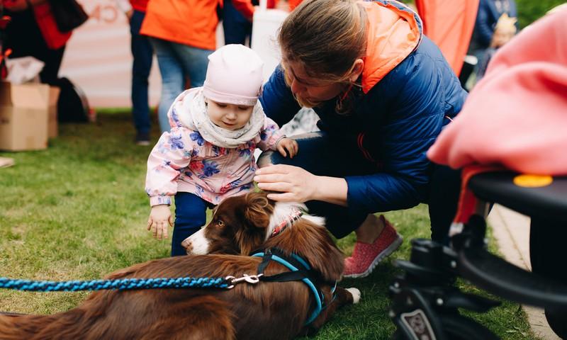 В палатке Royal Canin можно было проконсультироваться со специалистами по канистерапии и погладить собачек