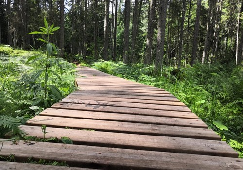 Лето, ах лето: по побережью Балтийского моря. Калтене. Часть 2