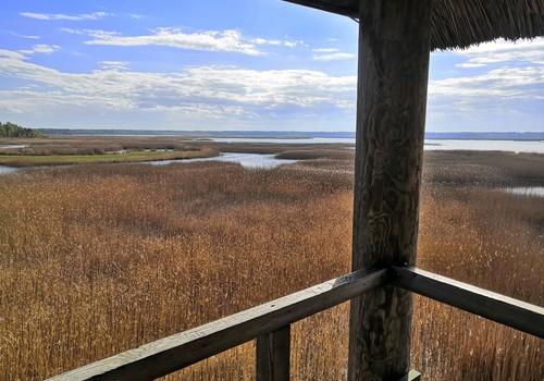 Походные заметки: почти водные приключения – парк рододендронов и тропы национального парка Кемери