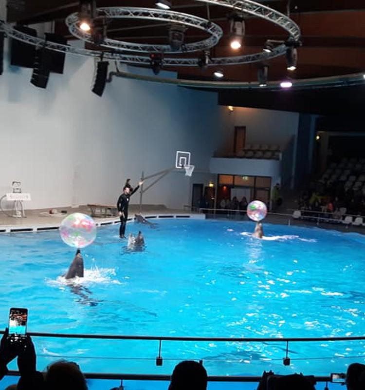 Дельфинариум и морской музей на Куршской косе - Клайпеда