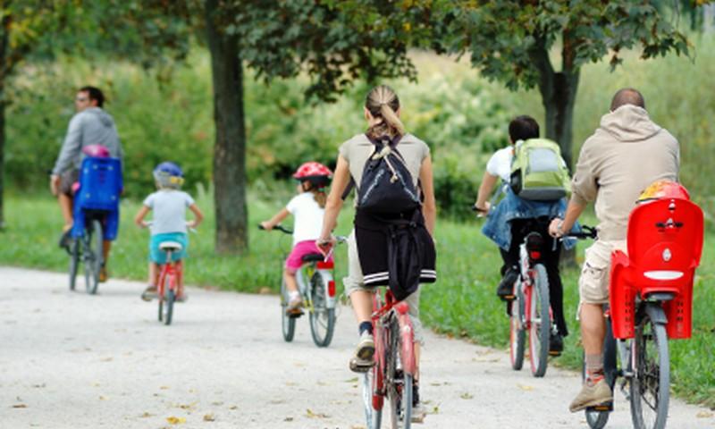Где ребенку бесплатно обучиться велоезде и получить права