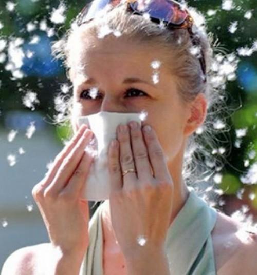 10 фактов о весенней аллергии