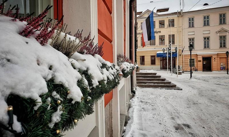 Рождественские в Тарту