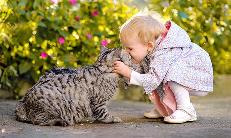 КОНКУРС ОДНОГО ФОТО на facebook.com: Мой малыш и котик