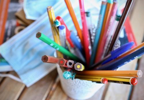 Продолжаем учиться дома. Решение правительства об обучении 1-2 классов в период ЧС
