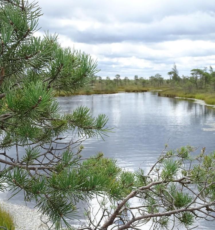 Кемерский национальный парк
