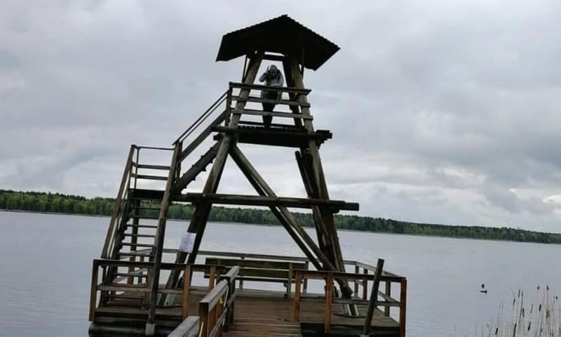 Походные заметки: по берегам озера Слокас и канавы Лужню