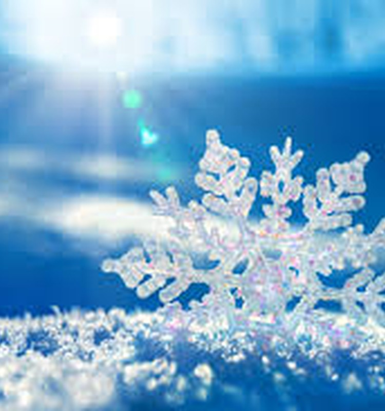 Наше снежное утро