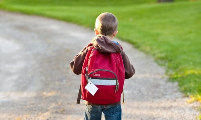 Обзор школ Латвии: итоги первой недели и подарки!