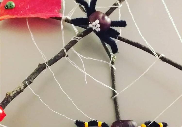 Осенние паучки