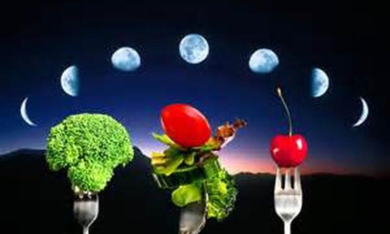 Лунная диета в 2016 году