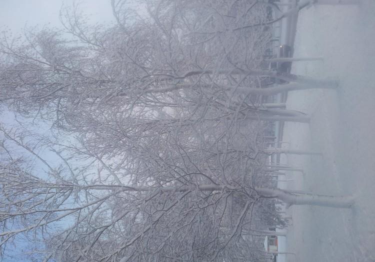 Last Christmas или вечно популярная Рождественская песня
