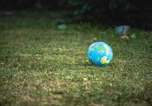 Экология: 18 февраля приглашают на первую зелёную встречу «На пути к COP26»