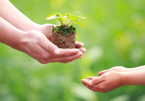 ДИСКУССИЯ: Благотворительность и дети