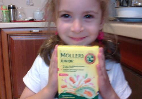 Mollers Junior: отчет о тестировании