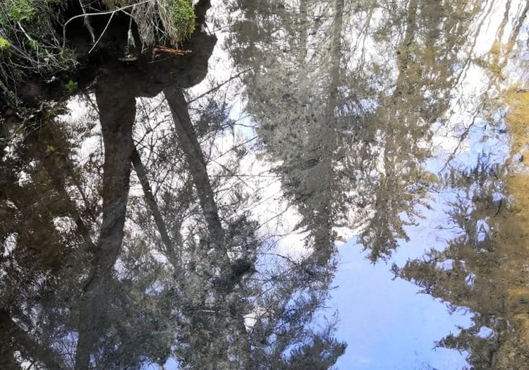 Походные заметки: Красная скала, источник Руцамавотс и природные тропы Цирулиши