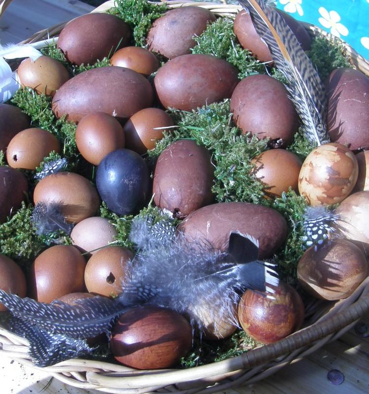 Как мы красили Пасхальные яйца