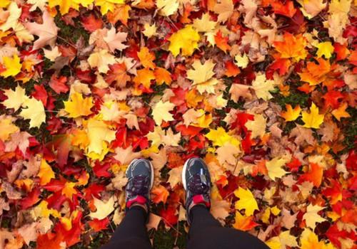 КОНКУРС НА FACEBOOK: Покажите, по каким осенним дорожкам бегают маленькие ножки!