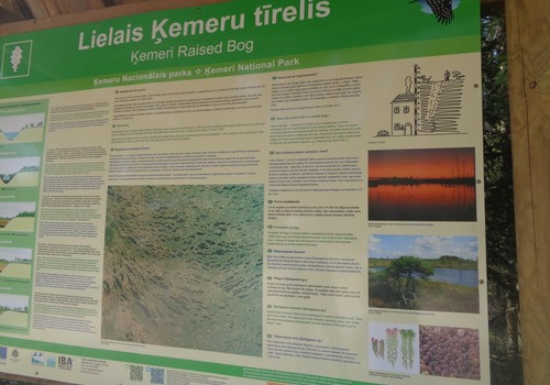 Прогулка по Кемерскому болоту