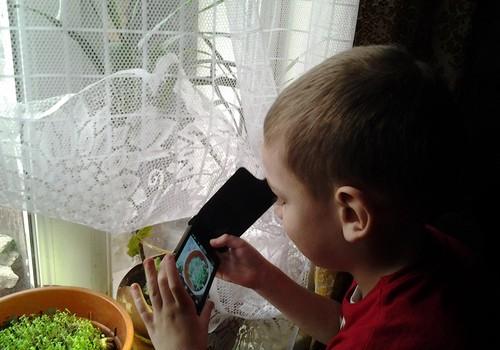 Тимур: У бабушки тоже весна