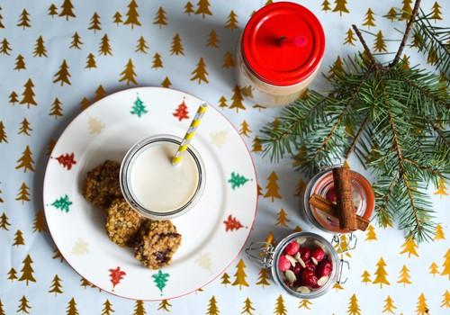 3 рецепта рождественских лакомств для малыша: рождественский коктейль, пудинг и печенье